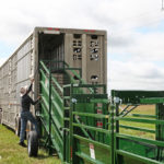 Cattle Chute Texas, for the 12′ PORTABLE CATTLE LOADING CHUTE